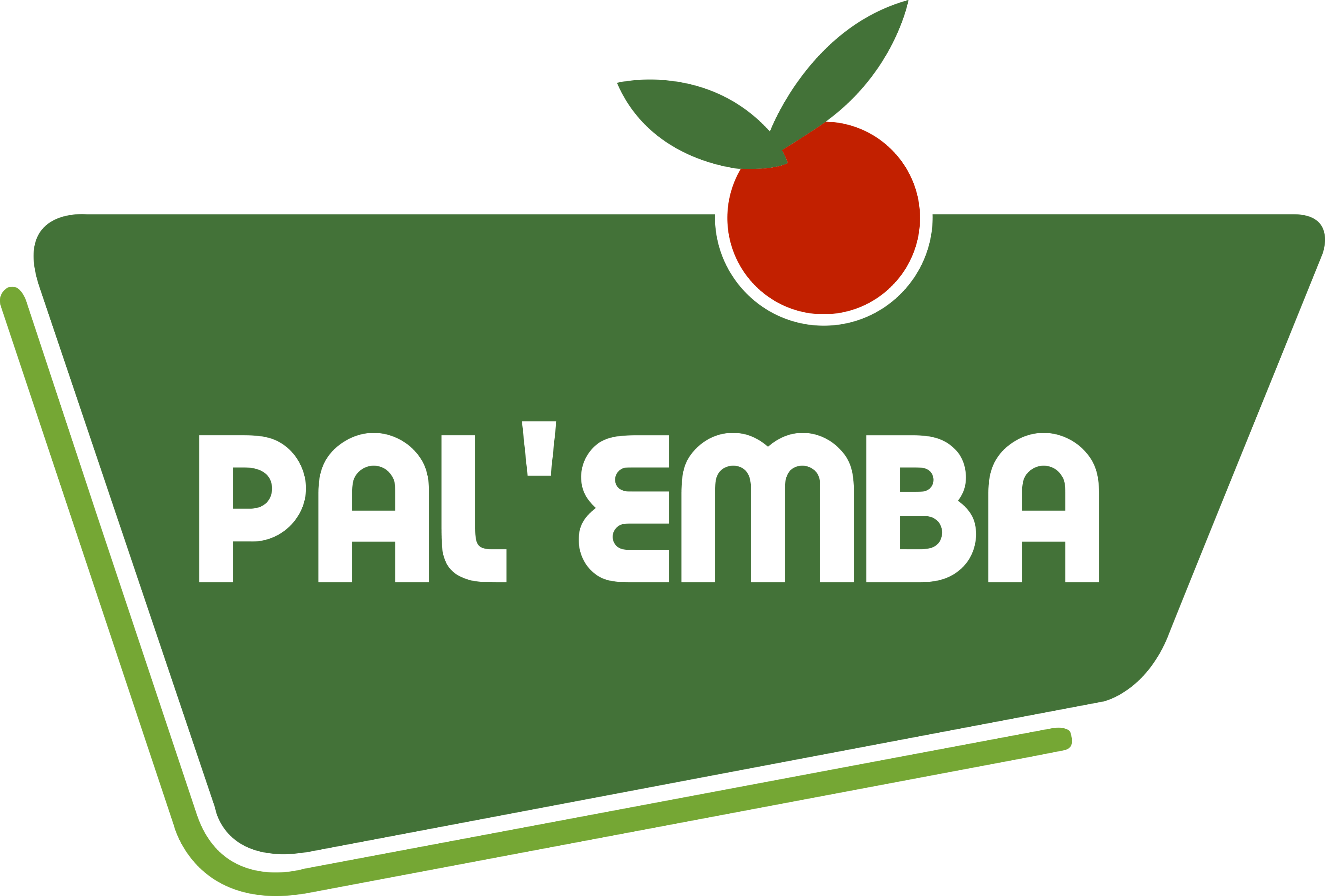 Palemba_RVB