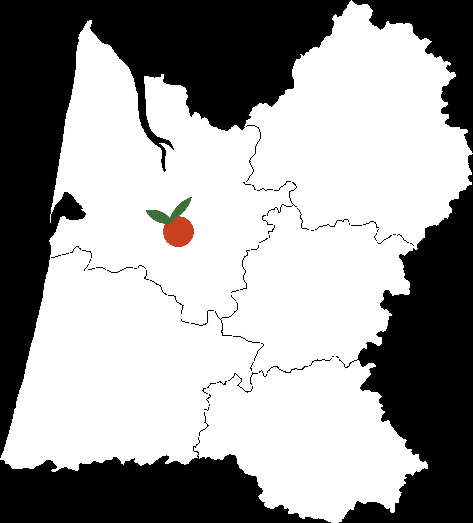 carte sainfruit